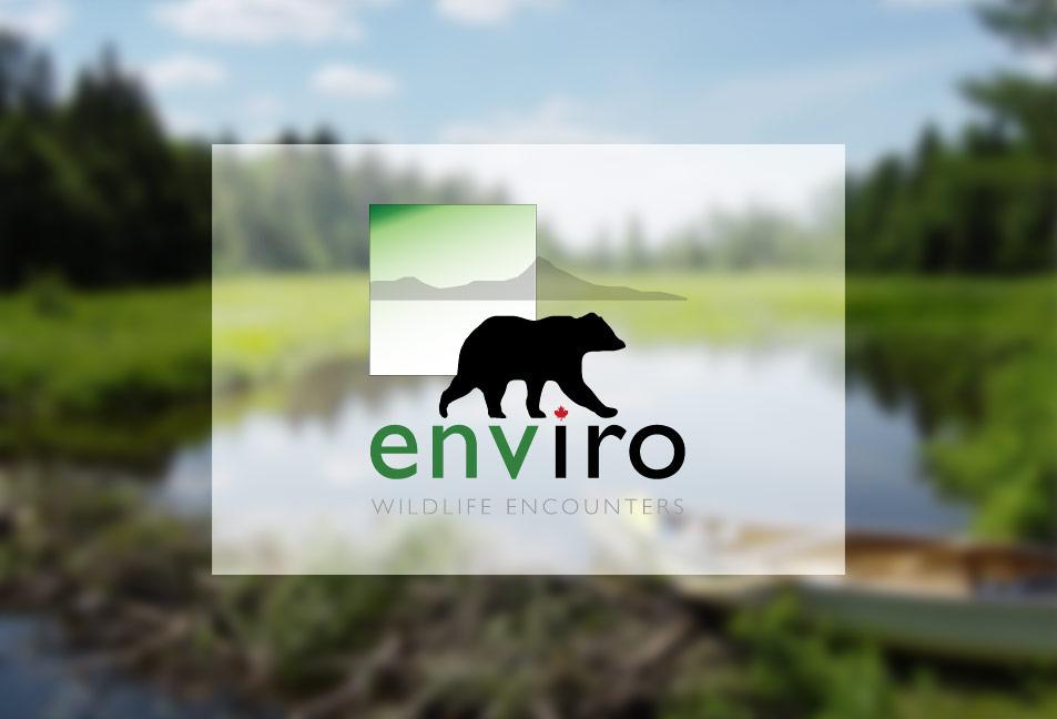 Enviro_Logo_IMG